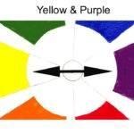 Also Called Color Opposites Essential Understanding