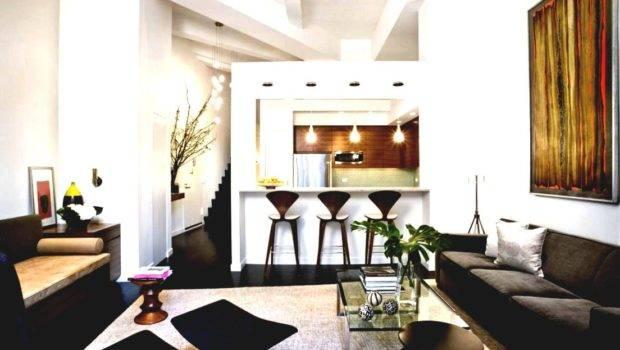 Amazing Good Interior Design Small Apartment Condomini
