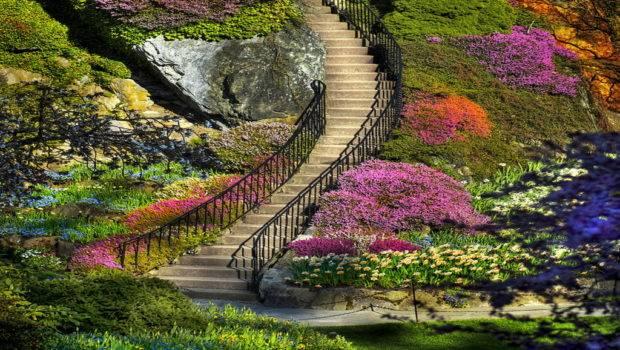 Amazing Things Blog Beautiful Flower Garden Photos