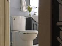American Standard Clean Toilet Throne Own