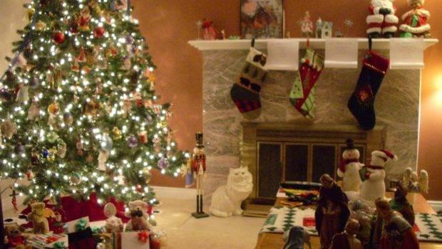 Amusing Pics Christmas Decorations Plus Home Decoration