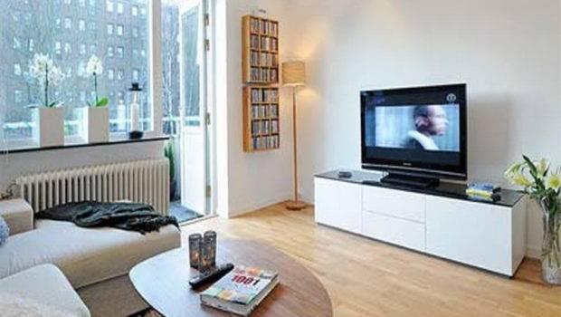 Apartment Small Living Room Decorating Ideas Design