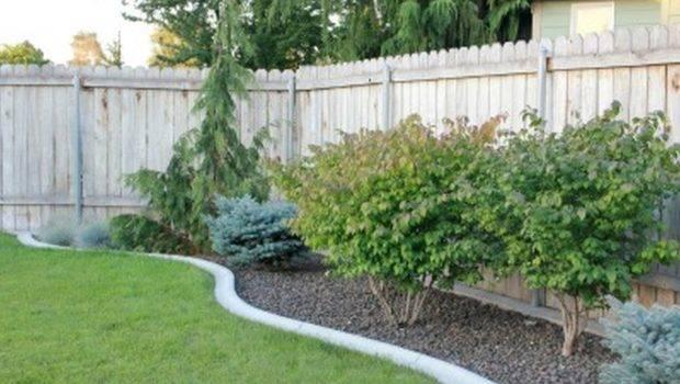 Backyard Landscape Designs Budget Large