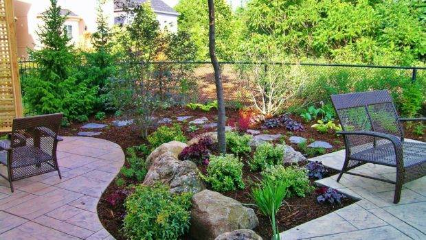 Backyard Without Grass Landscape Garten