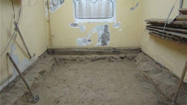 Best Flooring Basement Moisture Water Mold