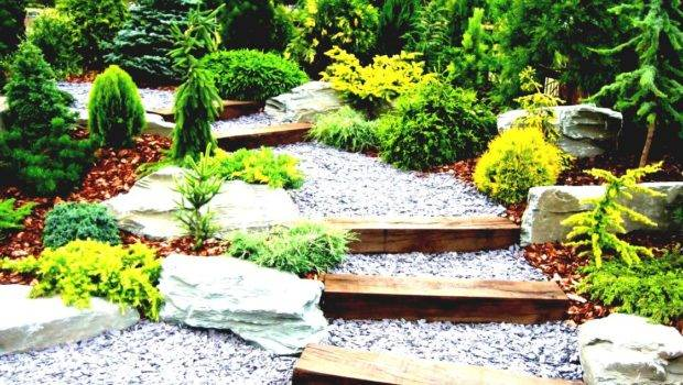Best Ways Simple Landscaping Ideas Budget Easy