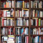 Bookshelf Mark Conroy Borrow