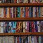 Bookshelf Tumblr