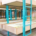 Bunk Beds Small Rooms Contentcreationtools