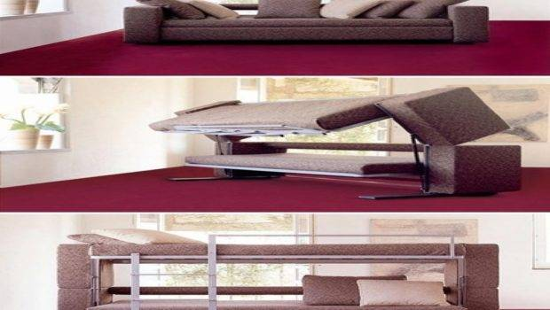 Calm Additional Home Decorating Ideas Then Sofa Turns Into Bunk Bed