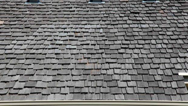 Can Spot Them Year Old Wood Roof