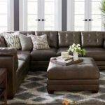 Care Leather Furniture Home Concept