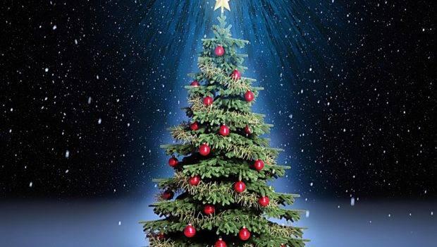 Christmas Trees Decoration Tree