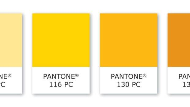 Color Psychology Does Yellow Say Cmbell Company Inc