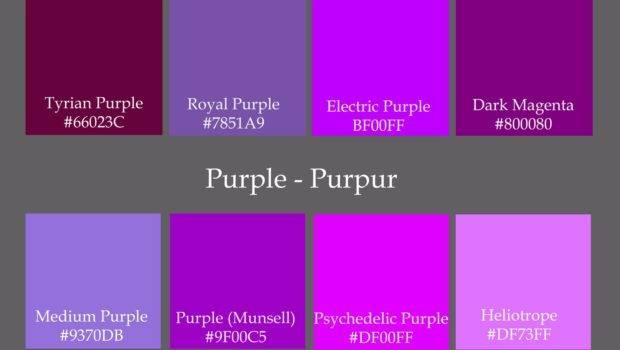 Colours Colour Codes Found Violet Purple Really