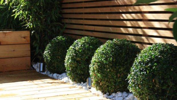 Contemporary Garden Design London Club