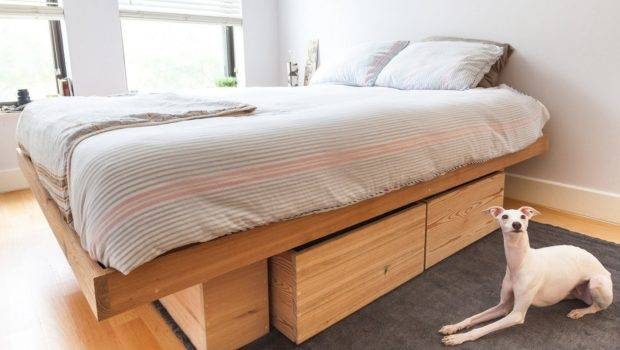 Cool Bed Frames Buying Guides Homestylediary