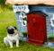 Cool Dog Houses Exceptional Style Paraligo