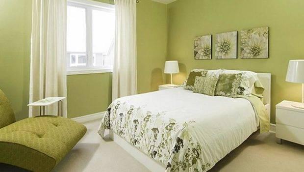 Decorate Bedroom Green Colour Interior