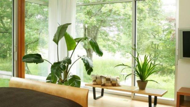 Decorate Room Floor Ceiling Windows
