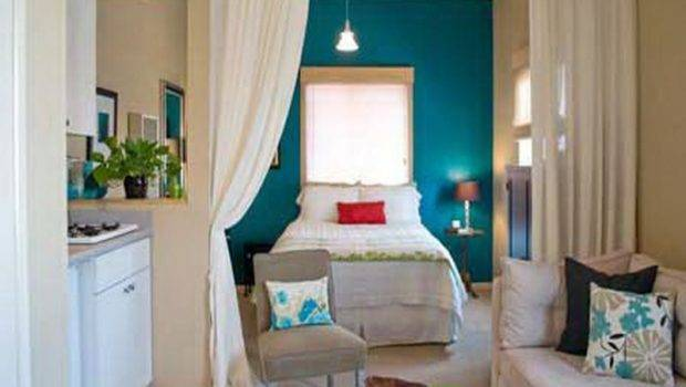 Decoration Curtainroom Divider Ideas Studio Apartments Room