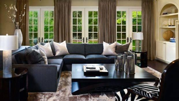 Denver Zebra Print Chairs Living Room Transitional