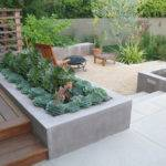 Desert Landscaping Backyard Plant Ideas