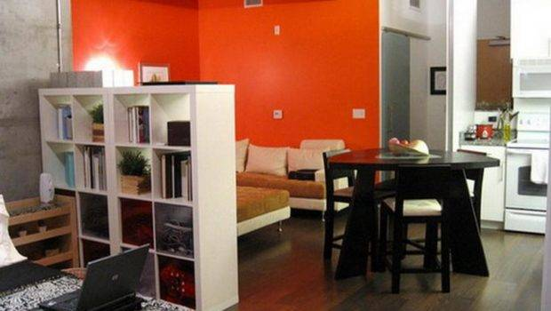 Divider Ideas Studio Apartments Small Bookshelf Room