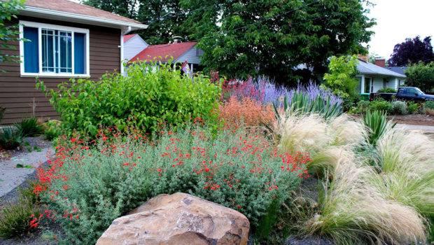 Drought Tolerant Garden Gravel Creative Landscapes