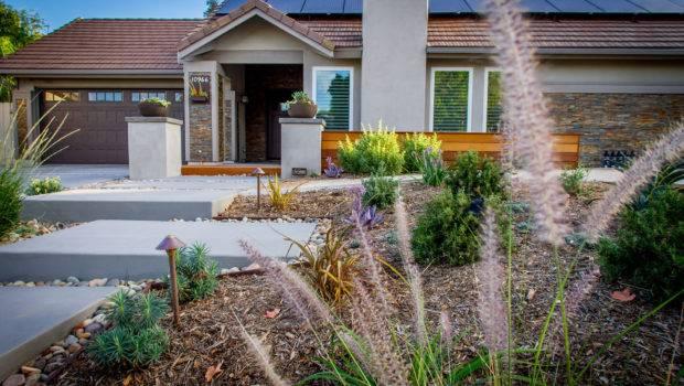 Drought Tolerant Landscaping Ideas San Diego