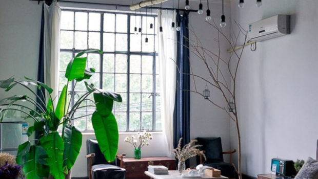Easy Ways Fill Your Apartment Natural Light