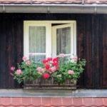 Eco Friendly Basics Top Green Building Tips