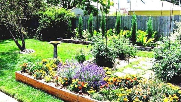 Fascinating Garden Ideas Budget Creative Choice