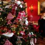 First Look Christmas White House Stella Place