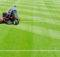 Five Tips Preparing Your Lawn Winter Neave Care