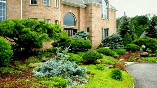 Front Yard Landscape Ideas Budget Elegant Home