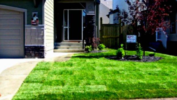 Front Yard Landscaping Ideas Budget Newest Home