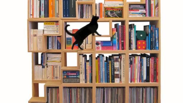 Fun Way Organize Display Your Home Office Books