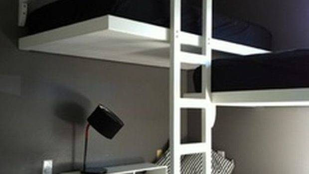 Furniture Really Cool Bunk Beds Custom