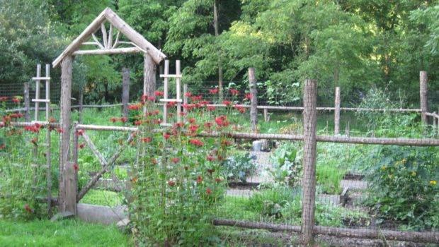 Garden Fence Design Ideas Plastic Home