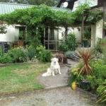 Garden House Houses