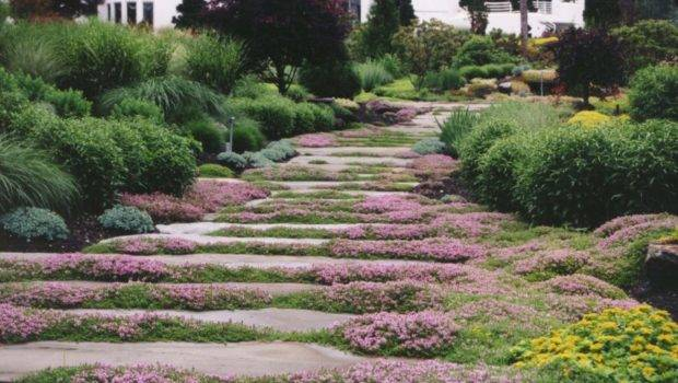 Garden Pathway Stepping Stone Natural