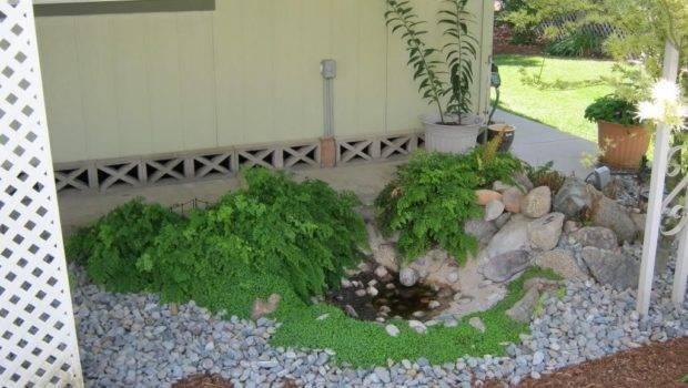 Gardening Ideas Budget Small Cost Low Garden
