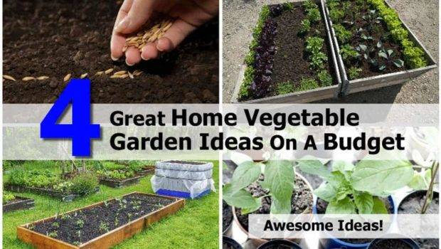 Great Home Vegetable Garden Ideas Budget