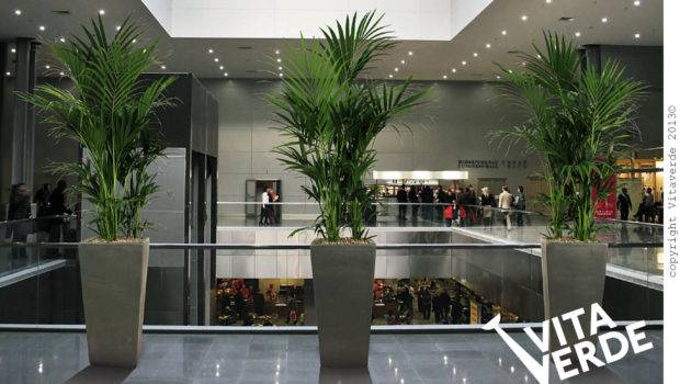 Green Corporate Spaces Vitaverde Unique Solutions