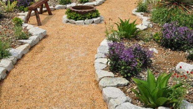 Green Dry Thumb Sacramento Homeowners Get Paid City