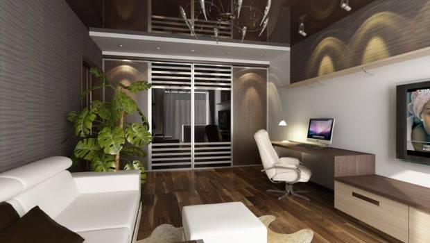 Interior Design Studio Apartment Living Home