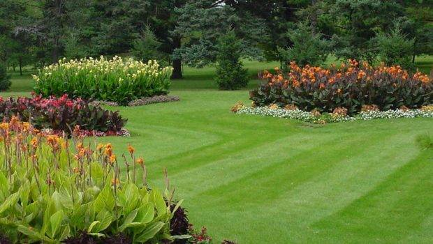 Lawn Care Rockland Landscaping Design Services