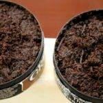 Left Grizzly Right Copenhagen Natural Long Cut Note