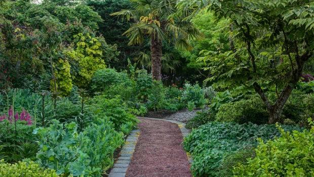 Linda Cochran Garden Down Path